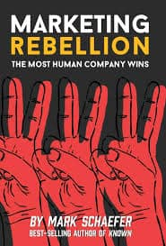 cover for Marketing Rebellion book